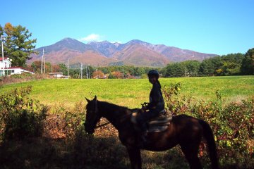 Horse-riding at Mt Yatsugatake.