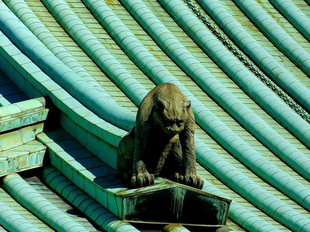 지붕의 수호자