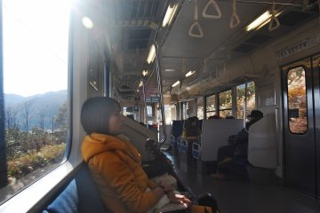A passanger and inside the train