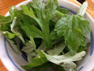 Cây ngải trong tiếng Nhật nhưng được gọi là fuuchiba trong tiếng Okinawan; những chiếc lá đắng này được tin có thể chữa được bệnh.