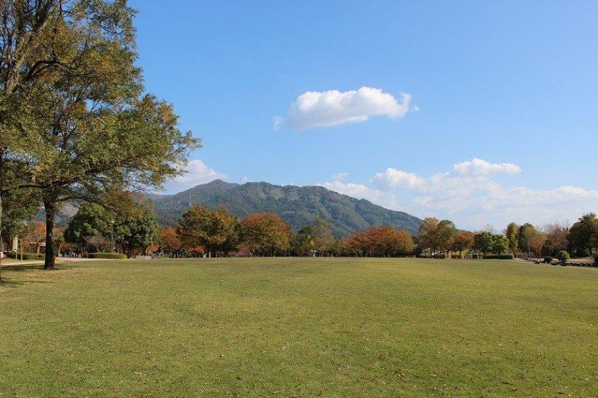 この眺めはハワイのカピオラニ公園をほうふつとさせてくれる