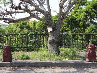 Hãy tìm cột mốc này dọc theo con đường phụ của Tuyến 6; con đường đất dẫn đến ngôi mộ nằm bên kia đường và cách khoảng 10m về phía Bắc