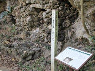 Một tấm bảng nhỏ viết bằng tiếng Anh và tiếng Nhật bên cạnh ngôi mộ, cung cấp thông tin chi tiết về tầm quan trọng của khu di tích