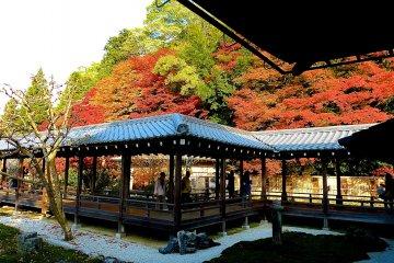 O Jardim Hojo de Nanzen-ji, Quioto