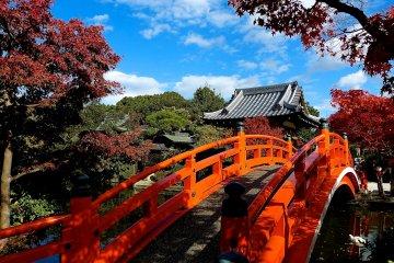 วัดชินเซน-เอนที่เกียวโต
