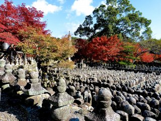 รูปปั้นหินกว่า 800 ชิ้นตั้งเรียงรายกันอยู่