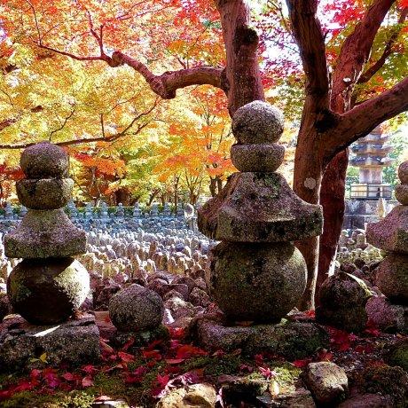 Kyoto Adashino Nenbutsu-ji Temple