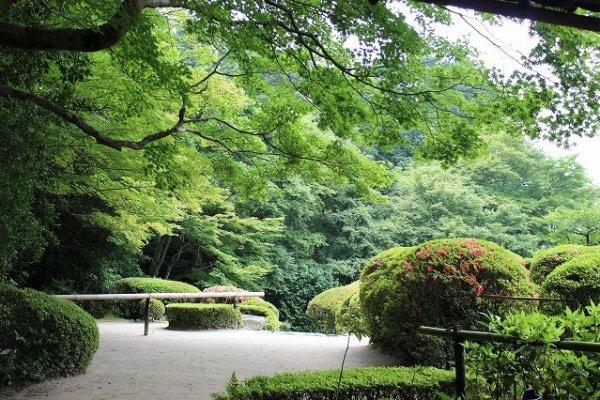 座敷から庭園を臨む。ここから外履きに換えて庭園におりる