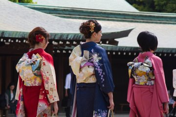 <p>These three young ladies were wearing&nbsp;amazing kimono; I was tempted to think that they looked more beautiful than the bride... but&nbsp;no, of course not!</p>