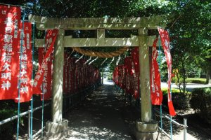 The shrine approach, banners shining brightly