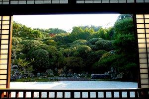 O grande jardim, visto da sala em frente, permite apenas uma vista muito limitada