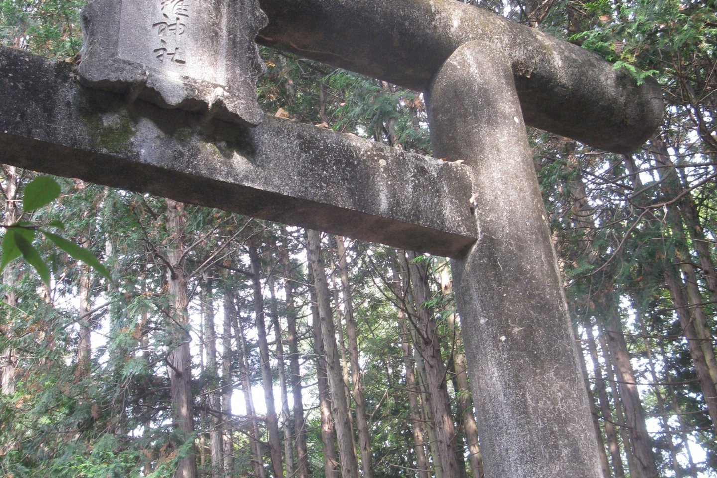 The first torii is a magnificent stone gate in the forest