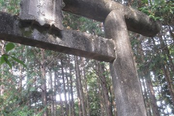 <p>The first torii is a magnificent stone gate in the forest</p>