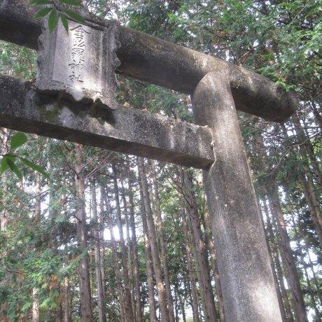 Hiking Mt. Hiwada, Saitama