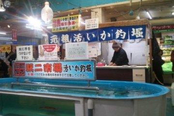 오징어 잡이
