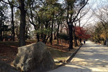 <p>A park outside the south exit hosts three museums built in 1998 and is also a popular place for viewing autumn&nbsp;leaves or cherry blossoms.&nbsp;</p>