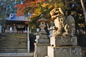 Komainu or lion dog, a guardian of the shrine.