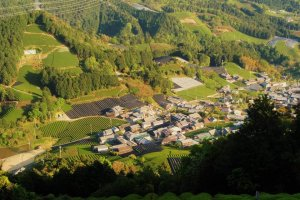 Wazuka town is in a valley nestled by stunningly green mountains, just a day trip from Kyoto