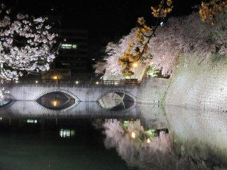 御本城橋とライトアップされた桜のコラボレーション