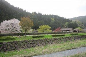 朝倉氏居館跡から川を挟んで復元された城下町跡を望む。右手に見えるのが侍屋敷だ