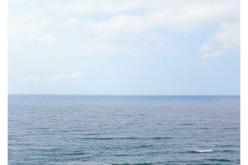 มองไยังทะเลจากบนเนินทราย