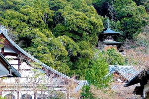 Templo Eikan-do