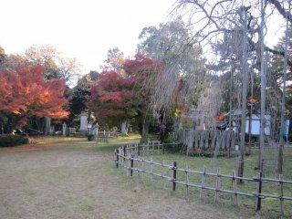 На территории храма Асува
