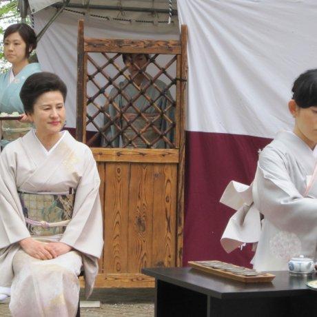 후쿠이 아스와야마(足羽山)오챠카이(大茶会)