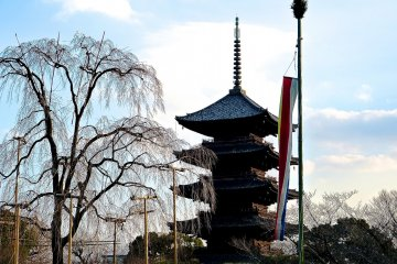 <p>Dark colored five-story pagoda&nbsp;silhouette emerging even before&nbsp;twilight</p>