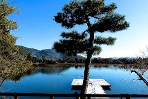 Soberba vista do Lago Osawa-no-ike a partir do terraço de madeira