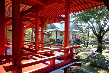 <p>Brilliant red temple building behind Shinden Hall</p>