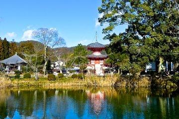 Lago Osawa-no-ike, Quioto