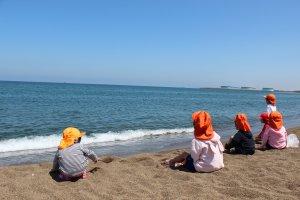 校外学習で、近くの海へ貝拾いにきました