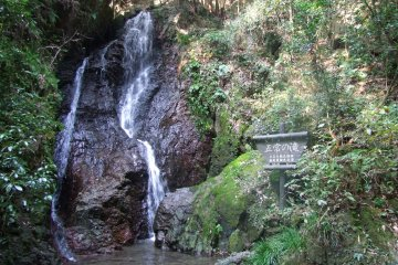 <p>The Gojo Falls in all its glory</p>