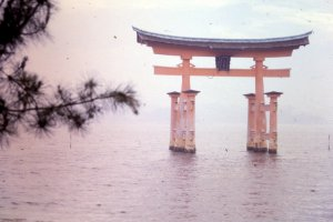Faded Picture of the Torii