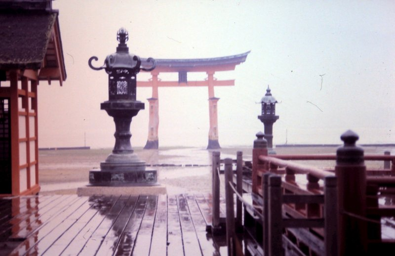 Torii or Torii gate in the mist
