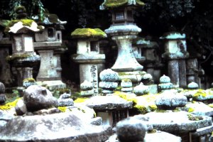 The ancient stone lanterns stand in line