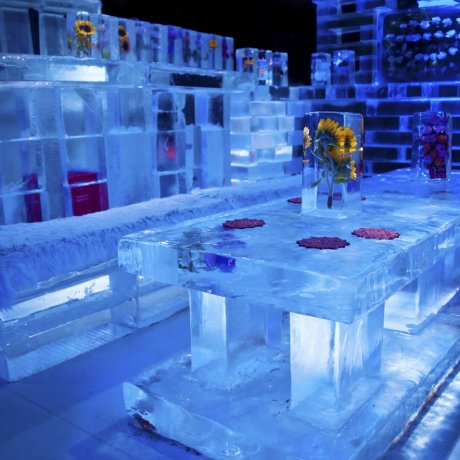 Le bar de glace de Huis Ten Bosch