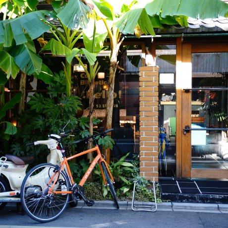 Cafe Bibliotec Hello, Kyoto