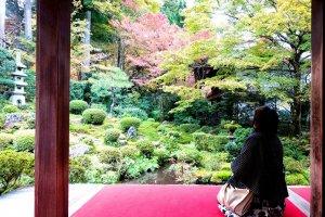 Losing yourself in the Sanzen-in Gardens