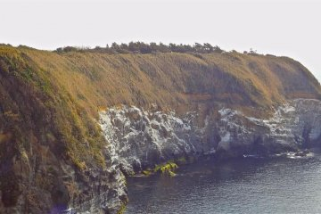 Joga-shima Island Hiking Course