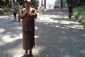 ทางเดินเข้าสู่ศาลเจ้าเมจิ