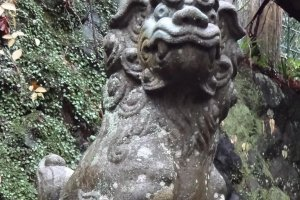 The moss covered stones and guardian dog statues are attractive, and remind you that you are in Japan…having the time of you life!