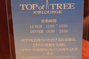 天空LOUNGE TOP of TREE