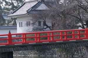 小田原城の橋とお濠(ほり)