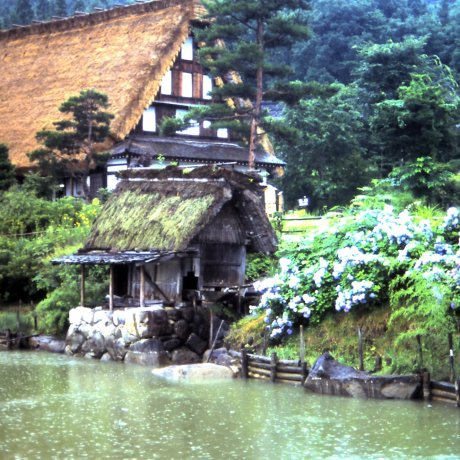 Отправьтесь в прошлое в Сиракаваго