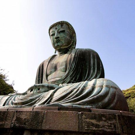 เที่ยวชมพระองค์ใหญ่ที่เมืองคามาคุระ