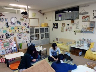 A view of the intimate cat cafe.