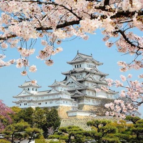 ปราสาทฮิเมจิ[Himeji Castle]