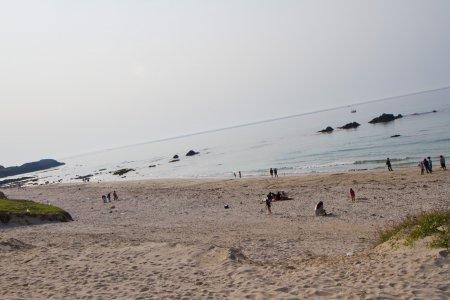コバルトブルービーチとオアシス